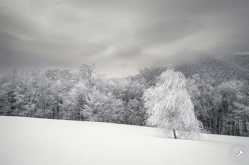 kartka-z-podrozy-bieszczady-zima-10