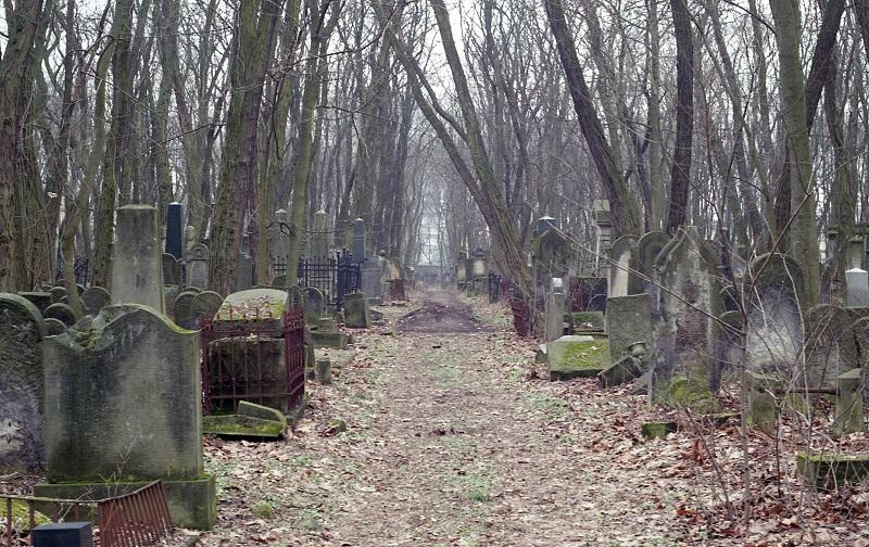 cmentarz-zydowski-na-woli-jpg