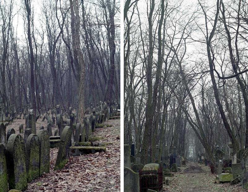 cmentarz-zydowski-na-woli1-jpg