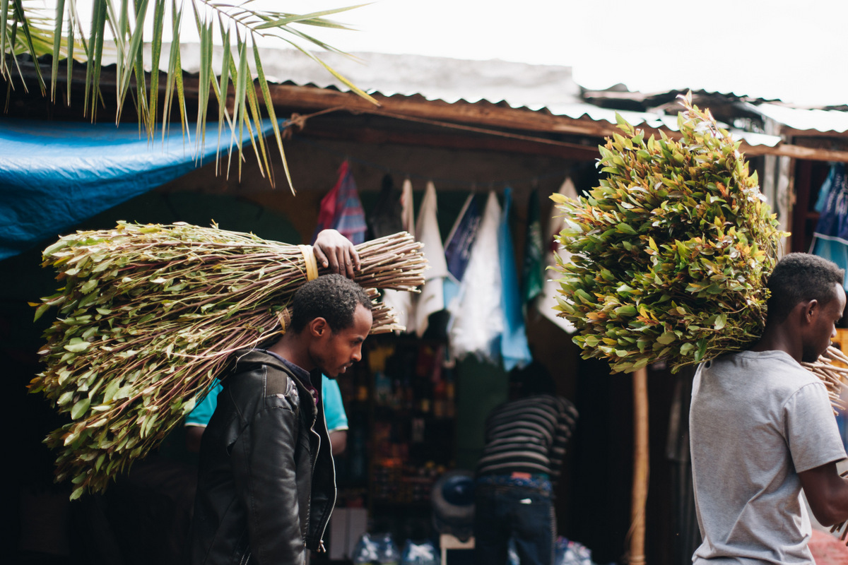 khat w etiopii