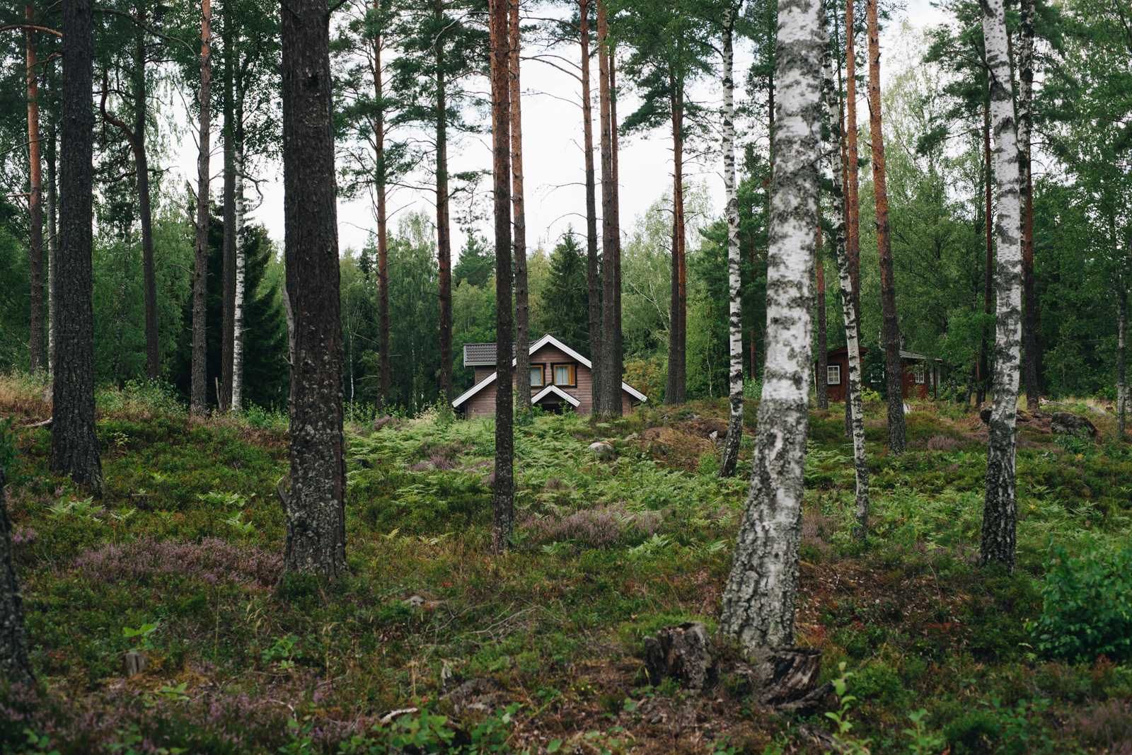 szwecja kultura szwedzkie domki letniskowe