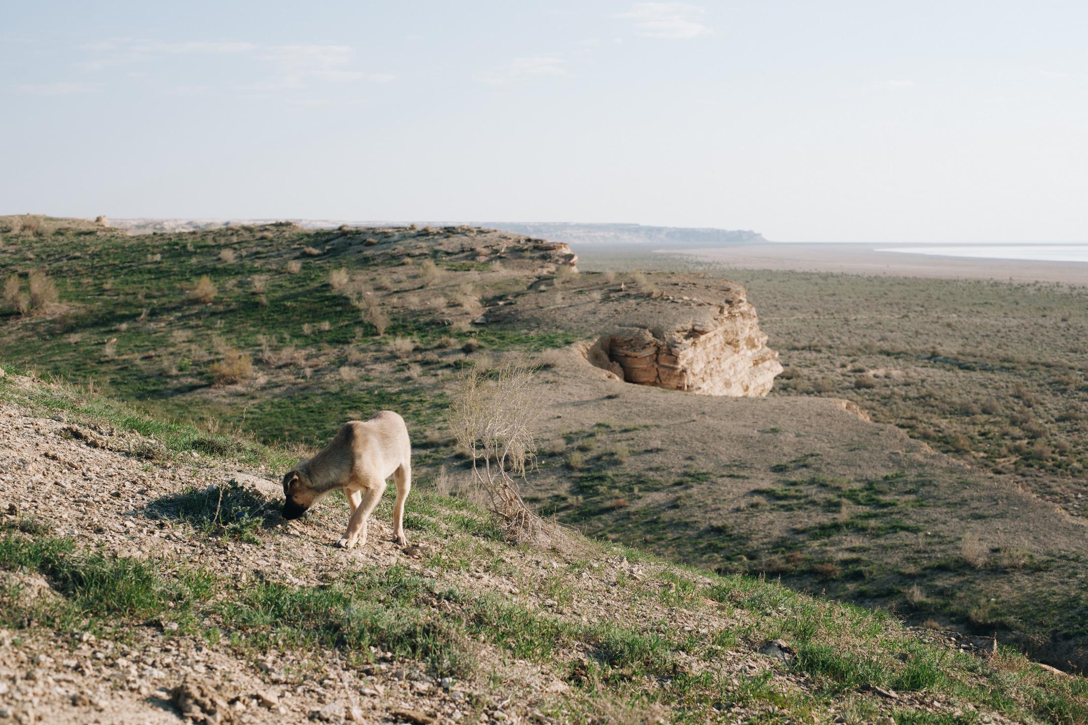 wyschnięte morze w uzbekistanie